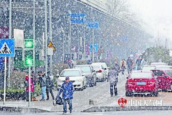 昨天,青岛街头行人在雪中行走。(半岛全媒体记者王滨 摄)