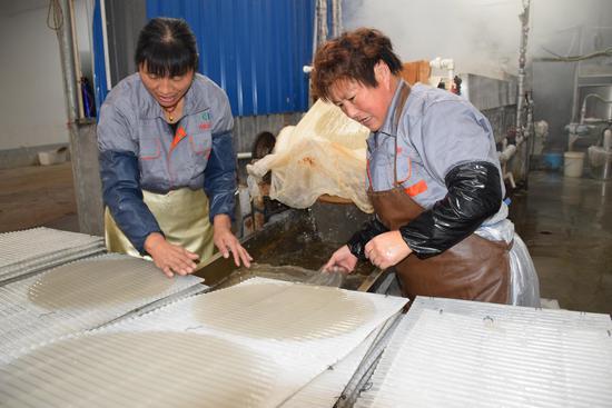 工人们将成型的粉皮铺平上架。