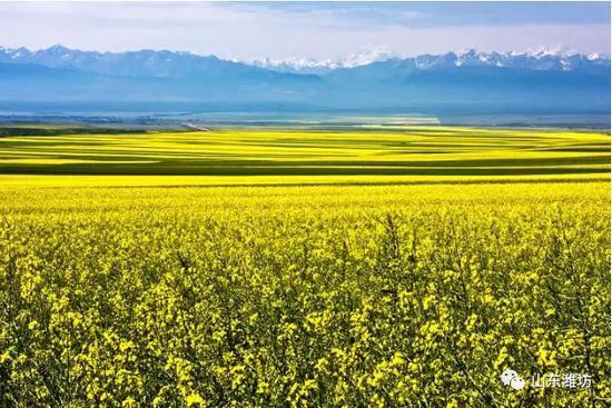该旅游专列可在山东省内各地市沿途上客