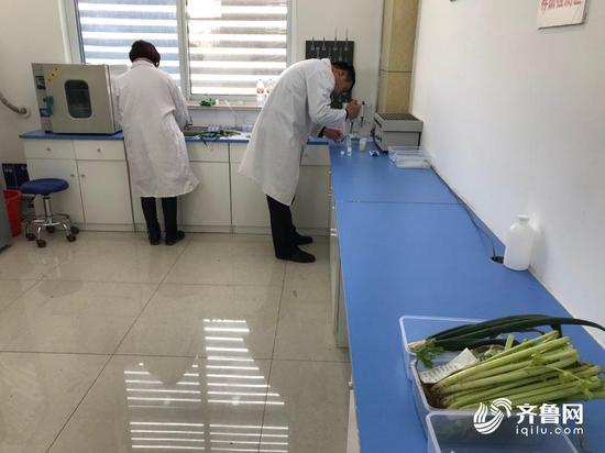 全流程质量管控150万吨蔬菜出口到50多个国家和地区