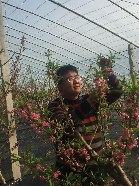 """""""桃痴""""初顺祥开发十几种桃树产品。"""