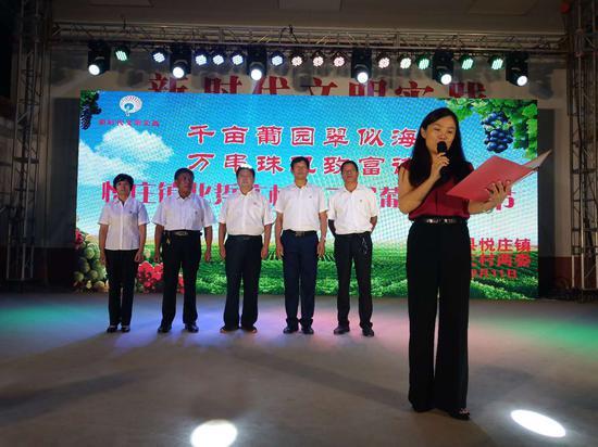 沂源县悦庄镇:千亩葡园翠似海 魅力踅庄葡萄节