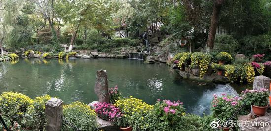 张耀方Virgo:泉池
