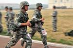 山东将加强退役士兵就业创业培训 建立就业奖励机制