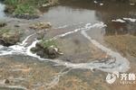 枣庄一河道疑似排污引质疑 生态环境部门:水质监测合格