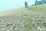 """滨州连续4年修复海洋生态环境 两百亿苗种入海贝壳堤""""长""""起来"""