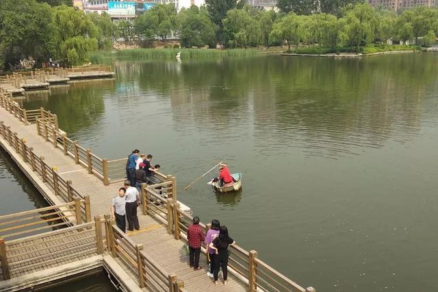惊险 莱芜红石公园一姑娘落水 热心市民合力救援