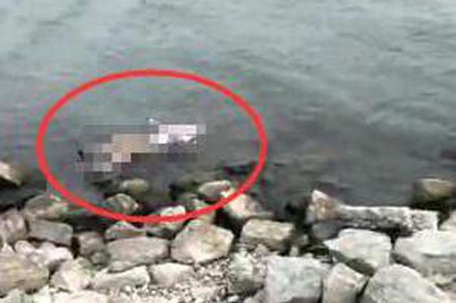 东平湖发生溺水事件 8岁男童与母亲双双溺亡