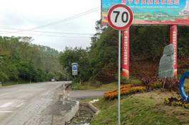 整治国省道涉速标志 山东已拆除涉速标志1006个