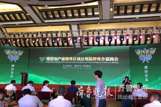 灾后寿光蔬菜怎样了 潍坊官方回应:蔬菜生产持续恢复