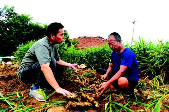 潍坊各地群众生产生活秩序基本恢复