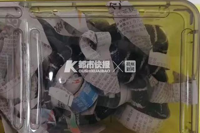 杭州一小伙想自杀 竟网购银环蛇咬自己 结果被咬后…
