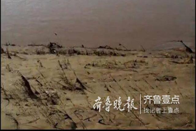 济南黄河大桥一女子跳河轻生 多位市民试图营救未果