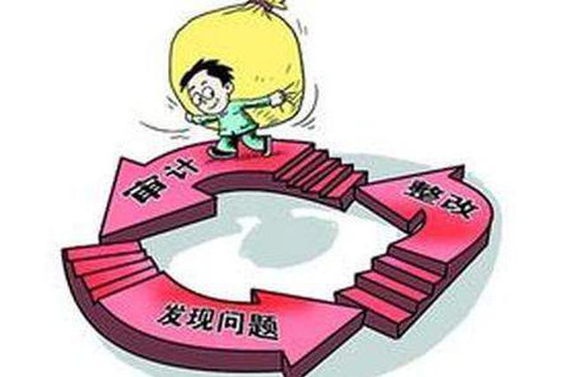 山东省出台跟踪审计意见 护航重大政策措施落实