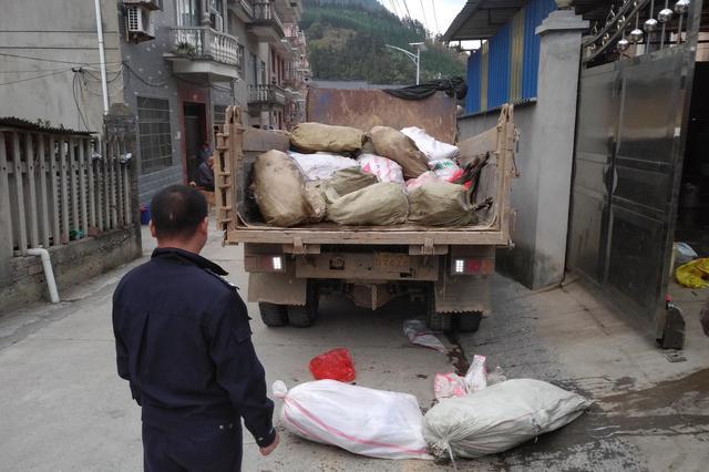 浙江开化查处大量野生动物冻体 两名嫌疑人被控制