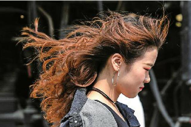 """济南进入""""风季""""今春已发布11次大风蓝警"""