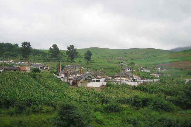 今年山东将加强和改进农业农村法治工作