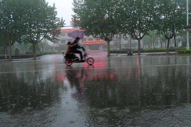气象部门:今年山东降雨持续偏少 旱涝并存可能性较大