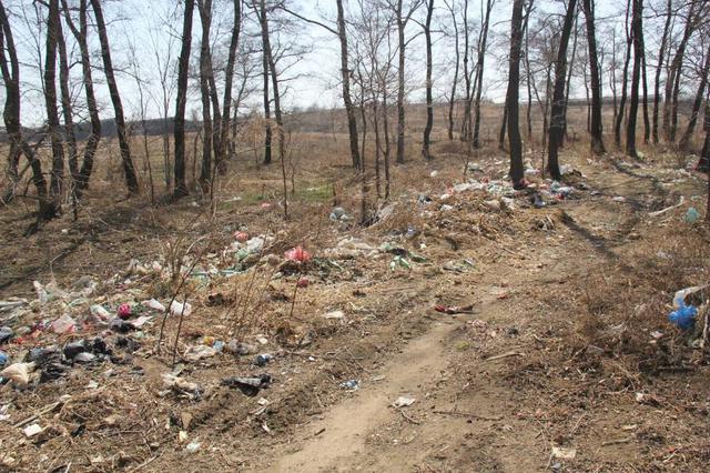 农村垃圾变废为宝 山东各地有何妙招