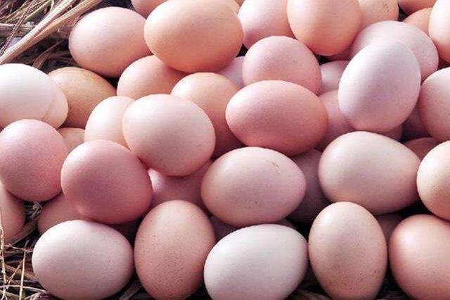 """山东鸡蛋""""双证制""""初现成效 抽检158批次仅1批次不合格"""