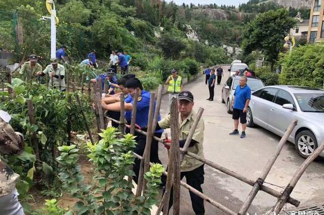 这个地方竟毁掉2000平山体种菜 济南市中城管集中清理整治