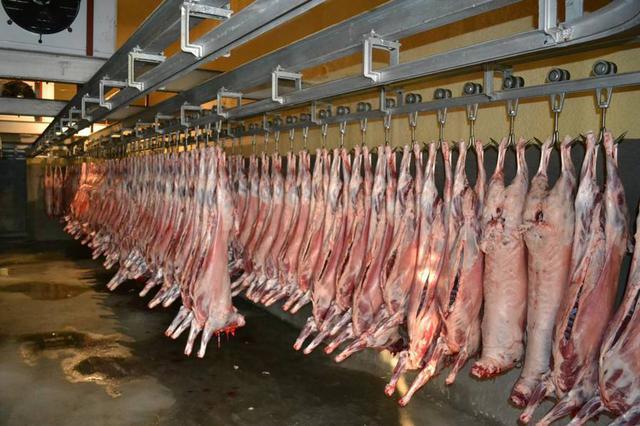 环评未批复就建屠宰生产线 济宁一屠宰厂被处罚 通报