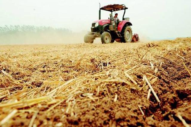 薛城发展现代化农业 特色农产品组建农民合作社