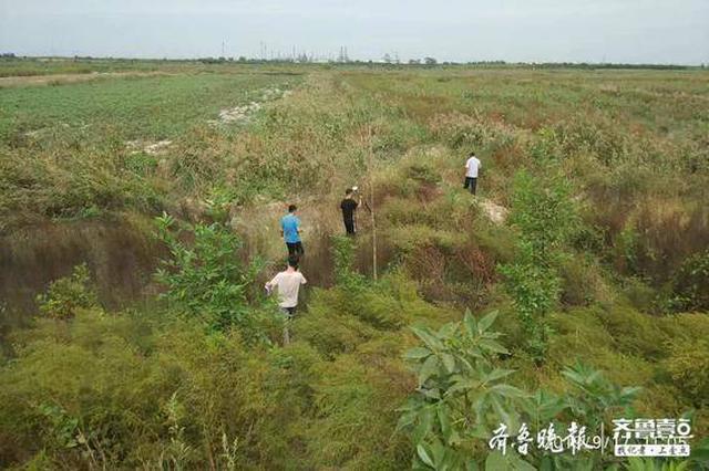 9月17日小清河复航工程征地拆迁工程正式启动