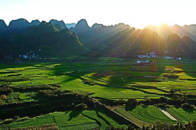 山东将实施乡村产业振兴六大行动 细化为17个工程