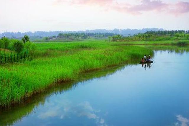 济宁湿地面积15.88万公顷国际湿地城市认证通过评审