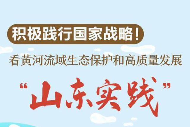 """看黄河流域生态保护和高质量发展""""山东实践"""""""