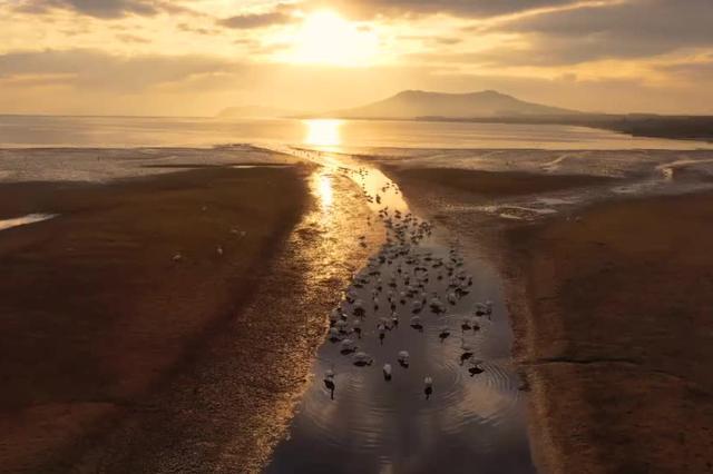 鲁豫两省签订省际横向生态补偿协议 共同支持黄河流域生态保护