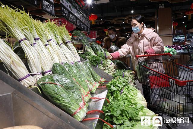 菜篮子还稳吗 探访山东多处蔬菜产业基地