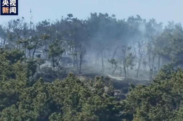 濟南發布紅色預警 青島山火已撲滅明火
