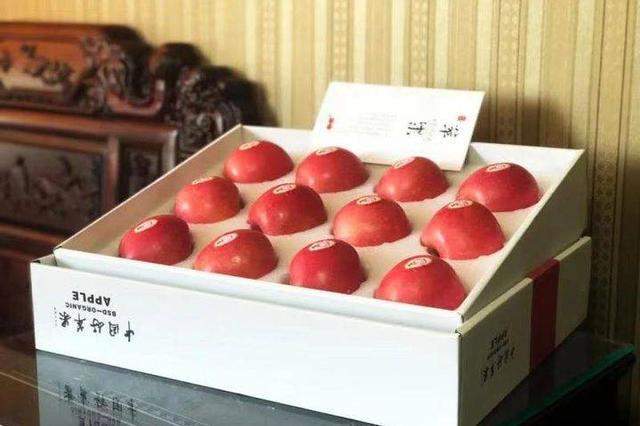 胶东五市首届林产品展销会10日启幕 青岛樱桃烟台苹果将亮相