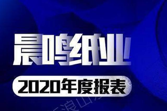 """山东晨鸣纸业虽盈利却难解资金""""饥渴"""""""