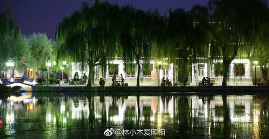 林小木爱照相:夜色垂柳