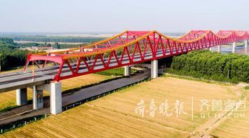 壮观 长清黄河大桥成黄河新景