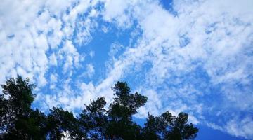 抬头看天 济南满天鱼鳞瓦块云