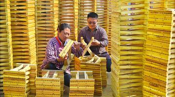淄博小夫妻创业做马扎 产量达到30余万