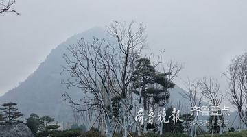晨雾散去 清晨的华山湖清新自然