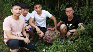 大学生散步时捡到恐龙蛋