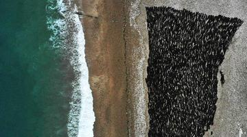 山东南隍城岛:海洋经济助渔民奔小康