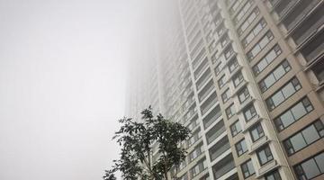 窗外一片白茫茫 济南被大雾笼罩