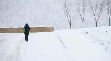 威海迎來牛年第一場雪