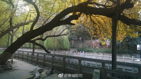 泉城街坊:初冬护城河