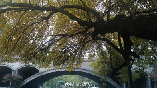泉城街坊:初冬护城河2
