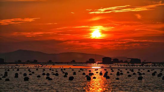 海上的光(作者:刘龙)