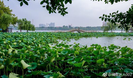 捕鱼达人007:大明湖