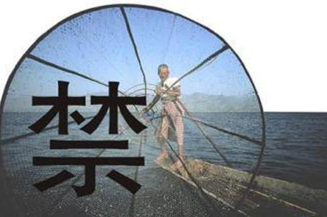 今年起黄河流域将实行禁渔期制度 包括东平湖大汶河